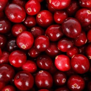Schmoo Cranberry & Pomegranate