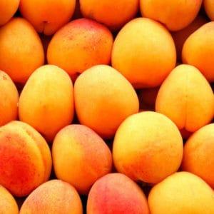 Schmoo Apricot & Peach